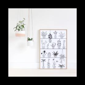 affiche-botanic.jpg